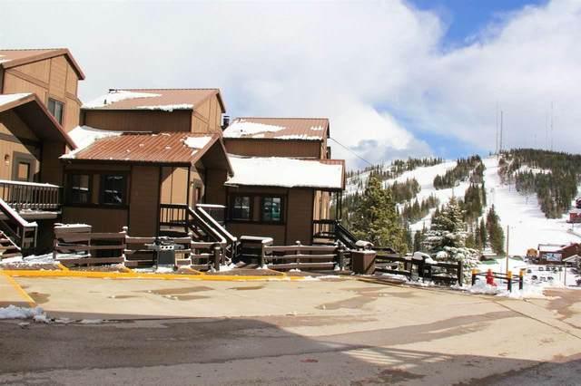 21111 SV3B Barefoot Loop, Lead, SD 57754 (MLS #65421) :: Black Hills SD Realty
