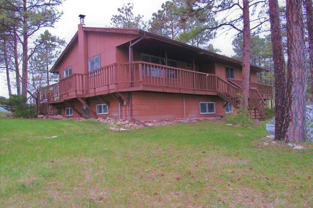6909 Ridgeview Drive, Black Hawk, SD 57718 (MLS #65449) :: Dupont Real Estate Inc.