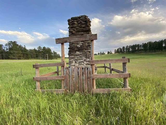 TBD Sidney Park Road, Custer, SD 57730 (MLS #65470) :: Christians Team Real Estate, Inc.