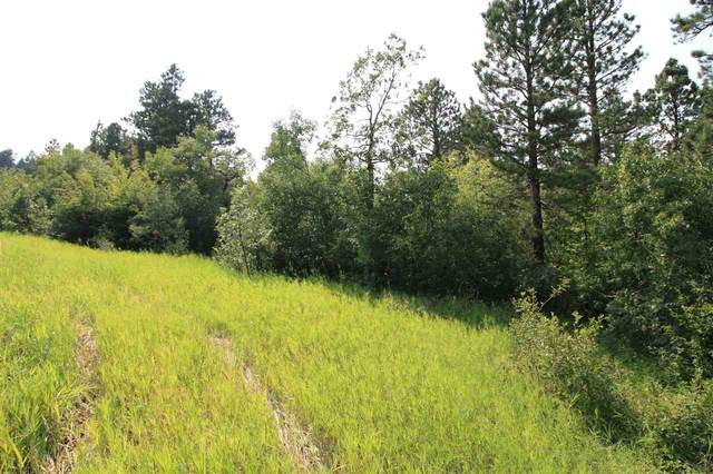 Tract 30A Pasque Loop, Spearfish, SD 57783 (MLS #65553) :: Dupont Real Estate Inc.