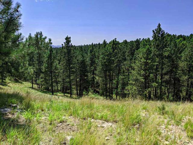 TBD Gobbler Ridge Road, Hot Springs, SD 57747 (MLS #65582) :: Dupont Real Estate Inc.