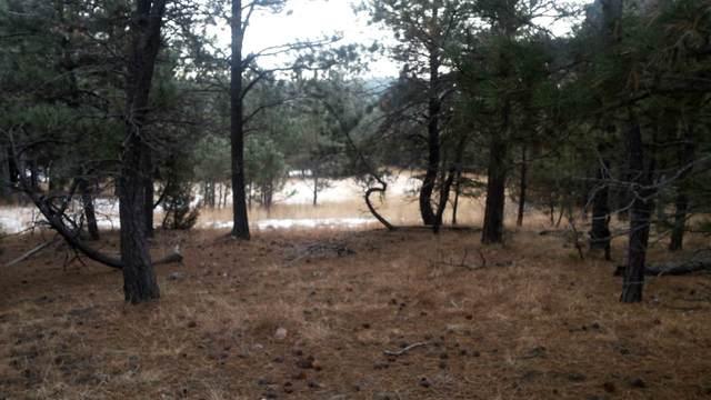 Tract 5 Rifleman Road, Hot Springs, SD 57747 (MLS #65608) :: Dupont Real Estate Inc.