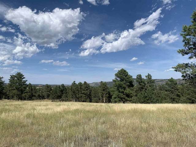 TBD Sunflower Trail, Hot Springs, SD 57747 (MLS #65653) :: Dupont Real Estate Inc.