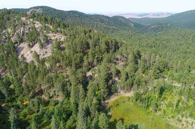 M.S. 1678 Shell Fraction, Deadwood, SD 57732 (MLS #65686) :: Daneen Jacquot Kulmala & Steve Kulmala