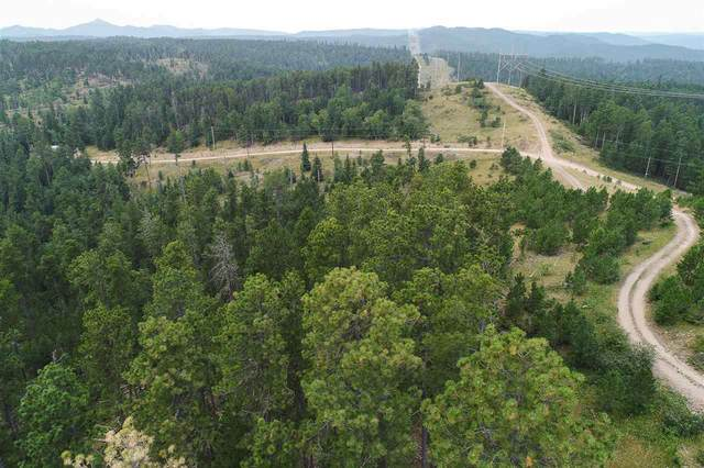 M.S. 1611 Lot 2 Wasp Road, Lead, SD 57754 (MLS #65724) :: Christians Team Real Estate, Inc.