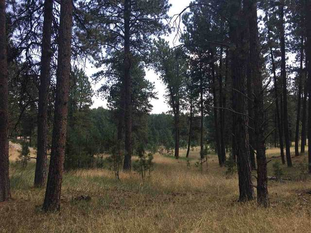 TBD Lot 12 Wittrock Road, Custer, SD 57730 (MLS #65755) :: Daneen Jacquot Kulmala & Steve Kulmala