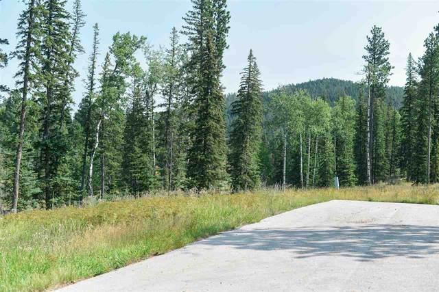 lot 12 blk 2 Ironwood Lane, Lead, SD 57754 (MLS #65766) :: Black Hills SD Realty