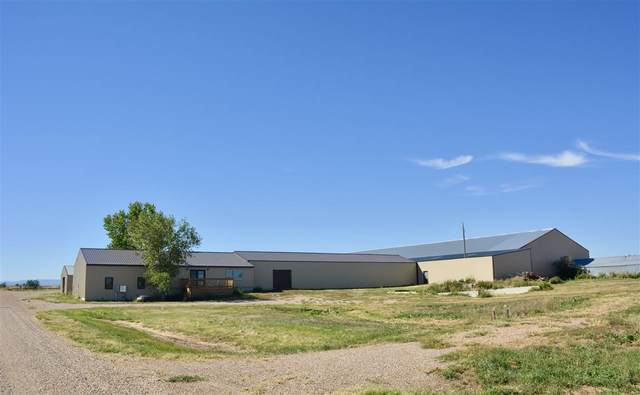 18509 Mail Road, Nisland, SD 57762 (MLS #65799) :: Christians Team Real Estate, Inc.