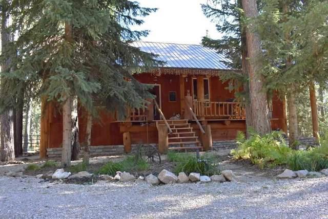 12025 Coyote Ridge Road, Deadwood, SD 57732 (MLS #65804) :: Daneen Jacquot Kulmala & Steve Kulmala