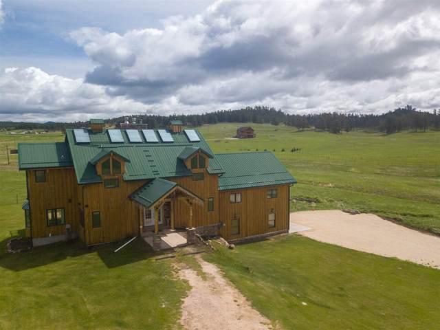 11892 Katherine Court, Custer, SD 57730 (MLS #65828) :: Dupont Real Estate Inc.