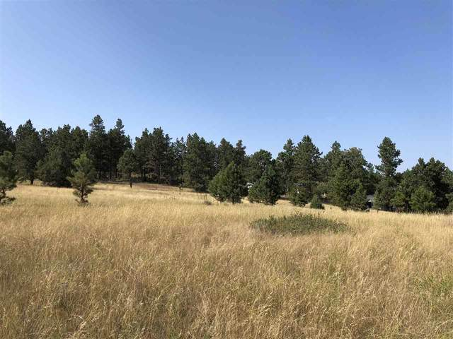TBD Darlene Lane, Hot Springs, SD 57747 (MLS #65832) :: Dupont Real Estate Inc.