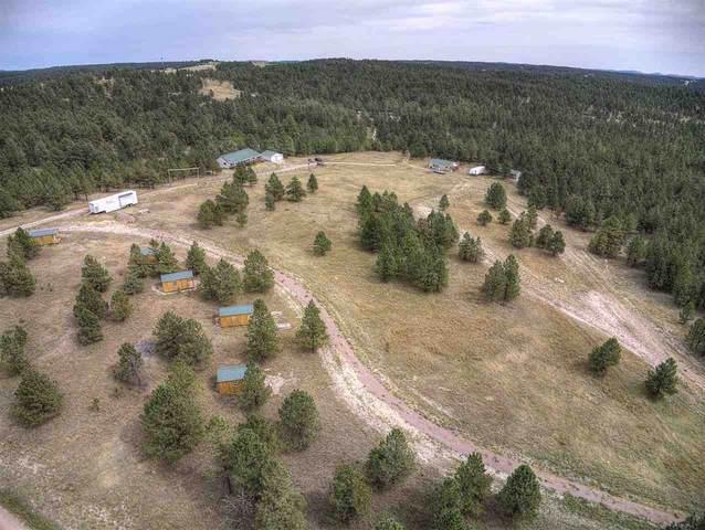 11863 W Argyle Road, Custer, SD 57730 (MLS #65842) :: Daneen Jacquot Kulmala & Steve Kulmala
