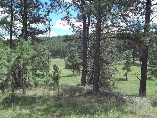 TBD Address Not Published, Custer, SD 57730 (MLS #65966) :: Dupont Real Estate Inc.