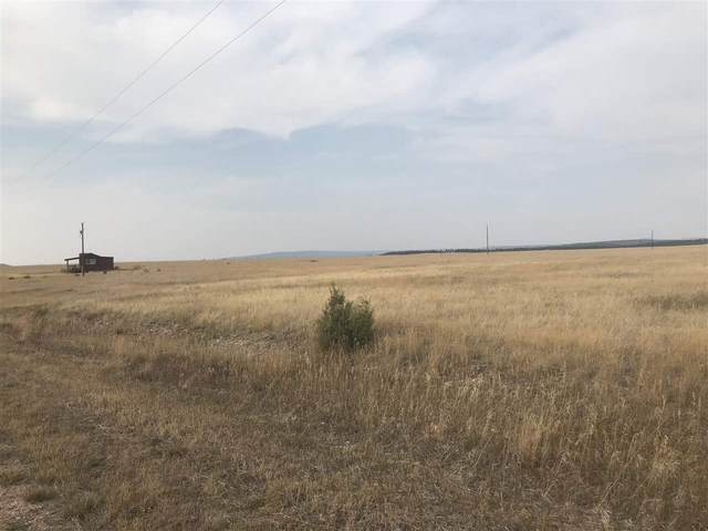 Turkey Trail, Edgemont, SD 57735 (MLS #65969) :: Dupont Real Estate Inc.