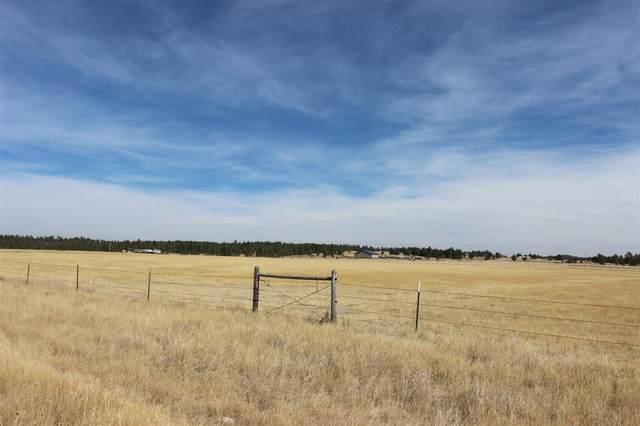 TBD Highlands Road, Custer, SD 57730 (MLS #65987) :: VIP Properties
