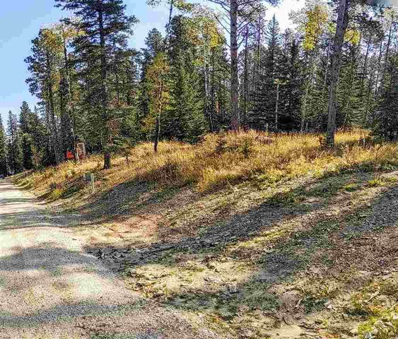 Lot 38 Woodland Springs Road, Lead, SD 57754 (MLS #66005) :: Christians Team Real Estate, Inc.