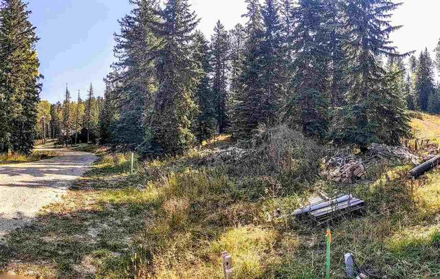 Lot 33 Woodland Springs Road, Lead, SD 57754 (MLS #66009) :: Christians Team Real Estate, Inc.