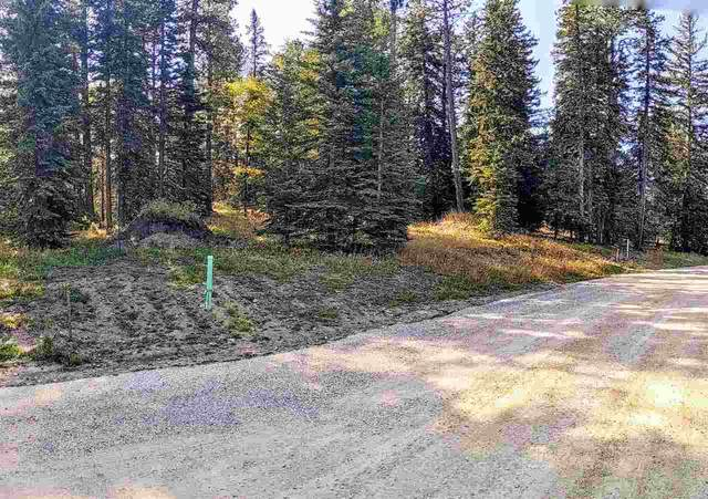 Lot 35 Woodland Springs Road, Lead, SD 57754 (MLS #66011) :: Christians Team Real Estate, Inc.
