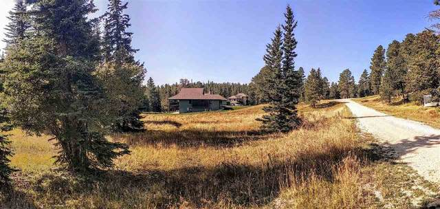 Lot 30A Woodland Springs Road, Lead, SD 57754 (MLS #66012) :: Christians Team Real Estate, Inc.
