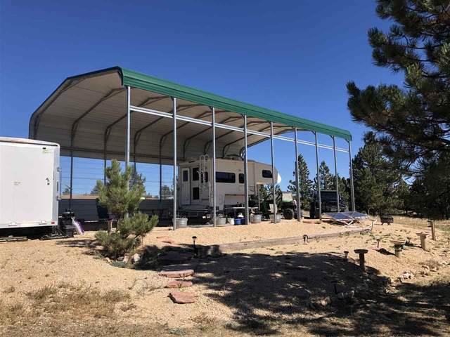 11979 W Argyle Road, Custer, SD 57730 (MLS #66055) :: Dupont Real Estate Inc.