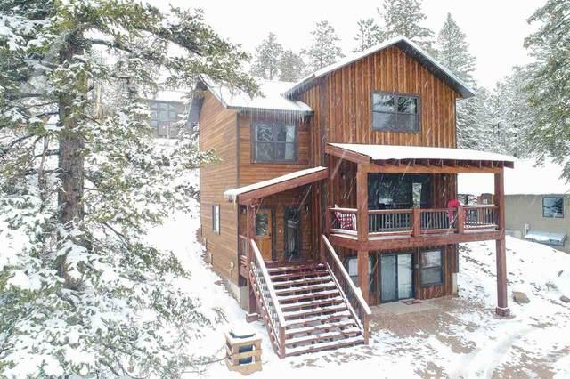 11022 Antelope Trail, Lead, SD 57754 (MLS #66255) :: Christians Team Real Estate, Inc.