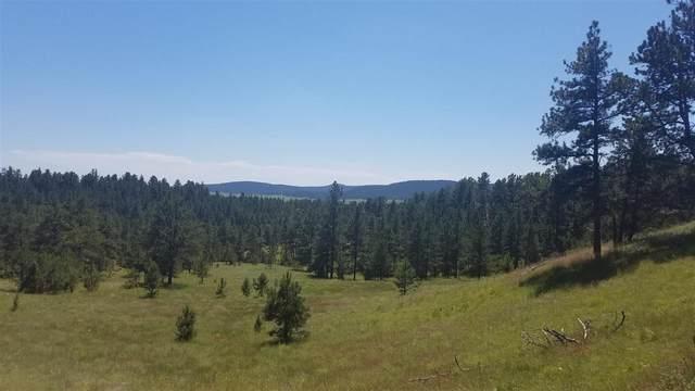 TBD Highway 89, Hot Springs, SD 57747 (MLS #66270) :: Daneen Jacquot Kulmala & Steve Kulmala