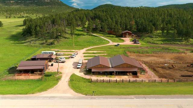 11596 & 11612 W Highway 16, Custer, SD 57730 (MLS #66289) :: VIP Properties