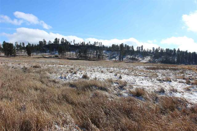 Tr. 11 Pleasant Valley Road, Custer, SD 57730 (MLS #66294) :: VIP Properties