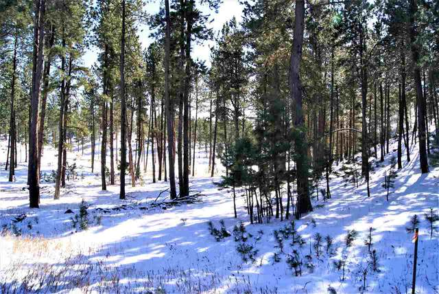 Lot 15 Caledonia Trail, Custer, SD 57730 (MLS #66401) :: VIP Properties