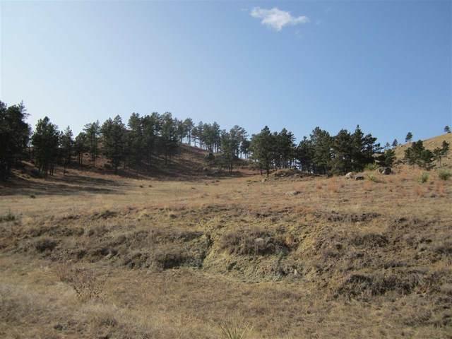 Lot 16A Hargins Road, Hot Springs, SD 57747 (MLS #66441) :: Dupont Real Estate Inc.