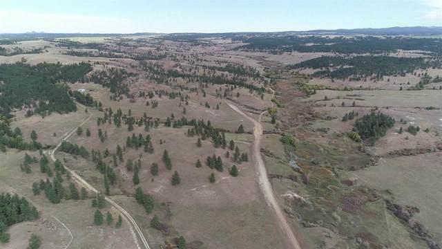 TBD Gold Dust Trail, Sundance, WY 82729 (MLS #66473) :: VIP Properties