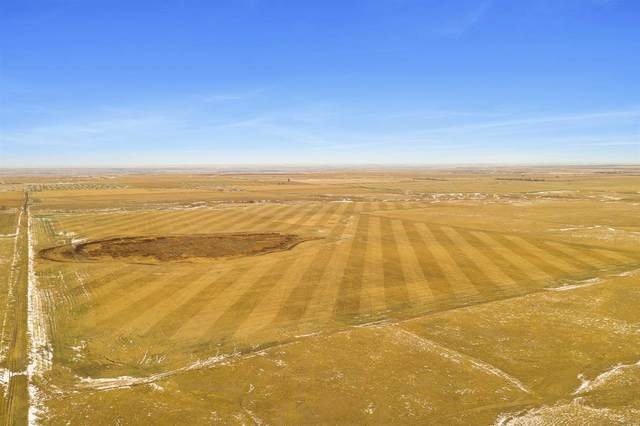 15801 Elk Creek Road, New Underwood, SD 57761 (MLS #66479) :: Christians Team Real Estate, Inc.