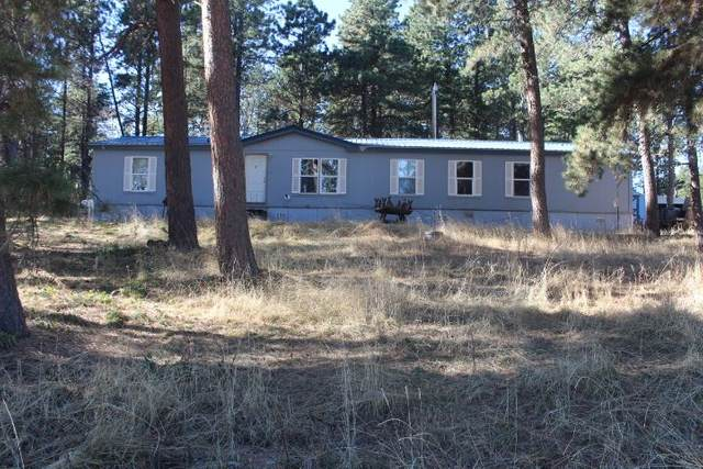 12045 Coyote Ridge Road, Deadwood, SD 57732 (MLS #66501) :: Christians Team Real Estate, Inc.