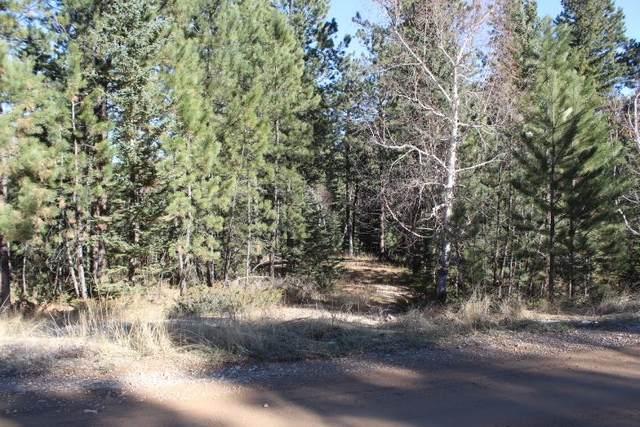 12052 Little Elk Road, Deadwood, SD 57732 (MLS #66503) :: Dupont Real Estate Inc.