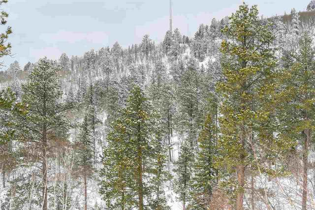 Lot 5 Address Not Published, Lead, SD 57754 (MLS #66512) :: Dupont Real Estate Inc.