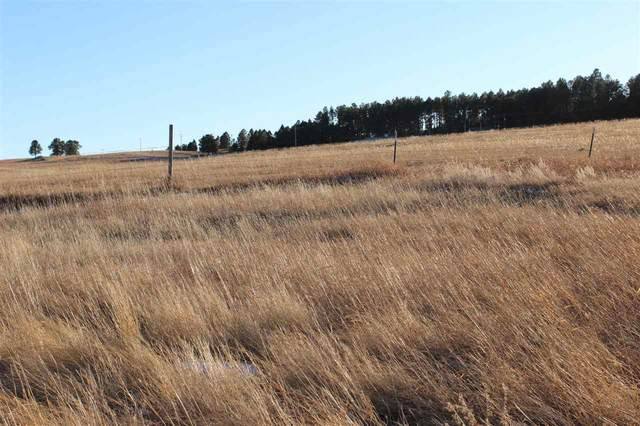 Lot 5 Agate Lane, Custer, SD 57730 (MLS #66566) :: Dupont Real Estate Inc.