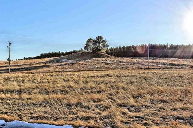 Lot 17 Sidney Park Road, Custer, SD 57730 (MLS #66572) :: Dupont Real Estate Inc.