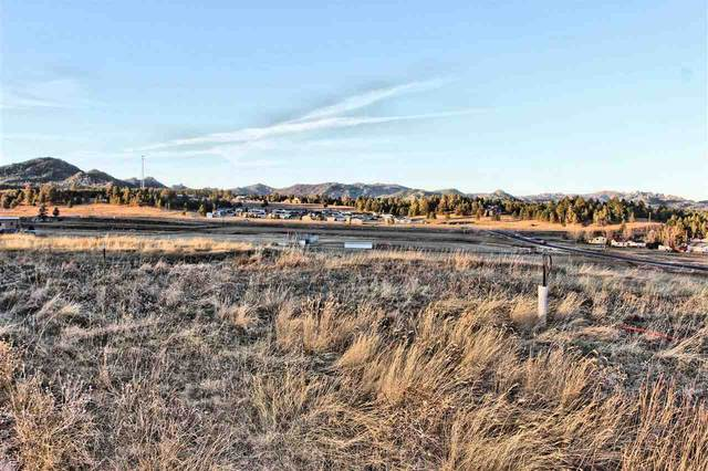 Lot 23 Rose Quartz Place, Custer, SD 57730 (MLS #66573) :: Dupont Real Estate Inc.
