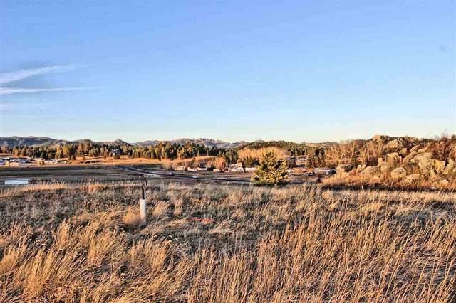 Lot 24 Rose Quartz Place, Custer, SD 57730 (MLS #66574) :: Dupont Real Estate Inc.