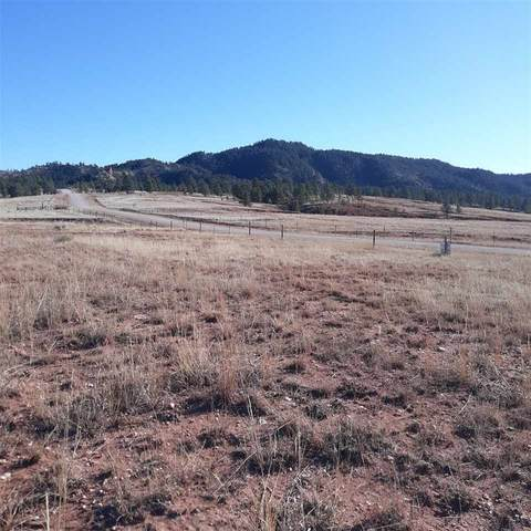 TBD Pilger Mountain Road, Hot Springs, SD 57747 (MLS #66732) :: Christians Team Real Estate, Inc.