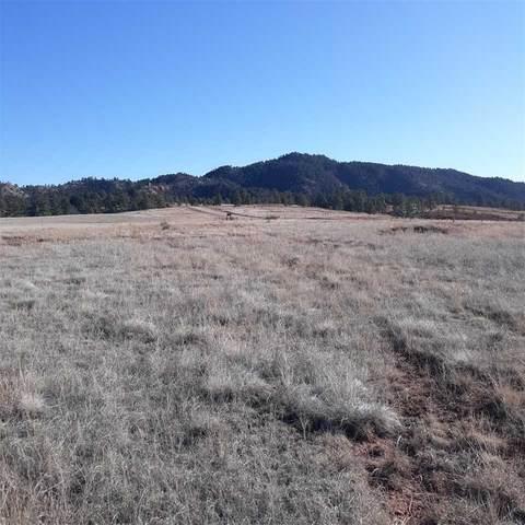 TBD Pilger Mountain Road, Hot Springs, SD 57747 (MLS #66738) :: Christians Team Real Estate, Inc.