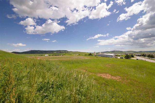 Paramount Drive, Spearfish, SD 57783 (MLS #66765) :: Black Hills SD Realty