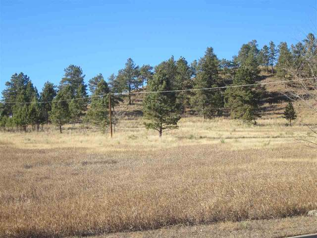 Tbd University Avenue, Hot Springs, SD 57747 (MLS #66780) :: Dupont Real Estate Inc.