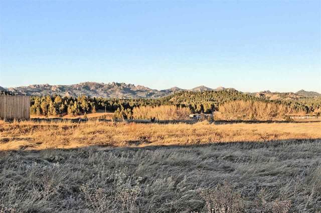 Lot 33 Rose Quartz Place, Custer, SD 57730 (MLS #66800) :: Daneen Jacquot Kulmala & Steve Kulmala