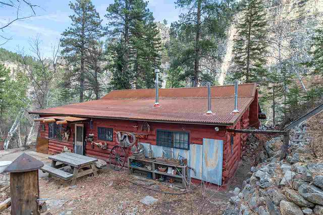 20485 Spearfish Canyon Road, Spearfish, SD 57783 (MLS #66817) :: Dupont Real Estate Inc.
