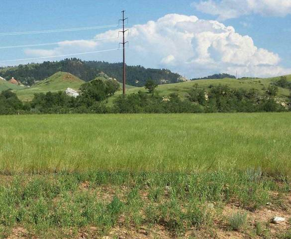 TBD Wolf, Spearfish, SD 57783 (MLS #66835) :: Christians Team Real Estate, Inc.