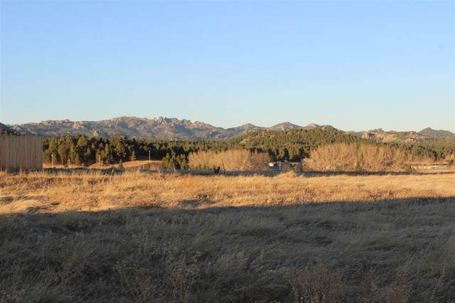 Lot 37 Stone Hill, Custer, SD 57730 (MLS #66852) :: Daneen Jacquot Kulmala & Steve Kulmala