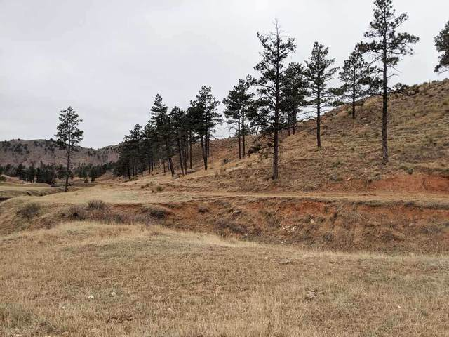 TBD Settlers Gulch Road, Hot Springs, SD 57747 (MLS #66855) :: Dupont Real Estate Inc.