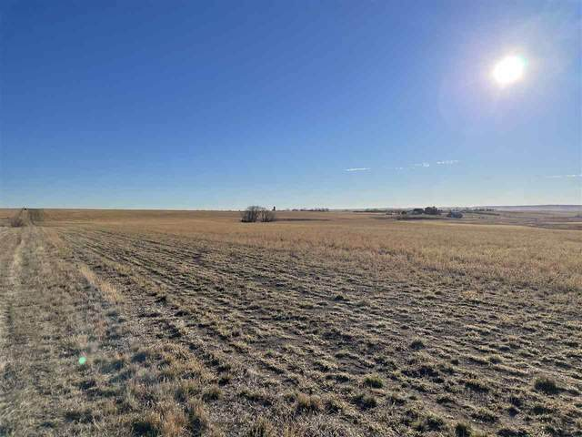 154th Address Not Published, Box Elder, SD 57719 (MLS #66919) :: VIP Properties