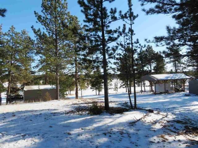 10415 Weber Drive, Custer, SD 57735 (MLS #66949) :: Black Hills SD Realty